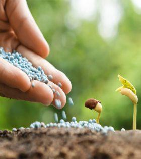 کود و خاک